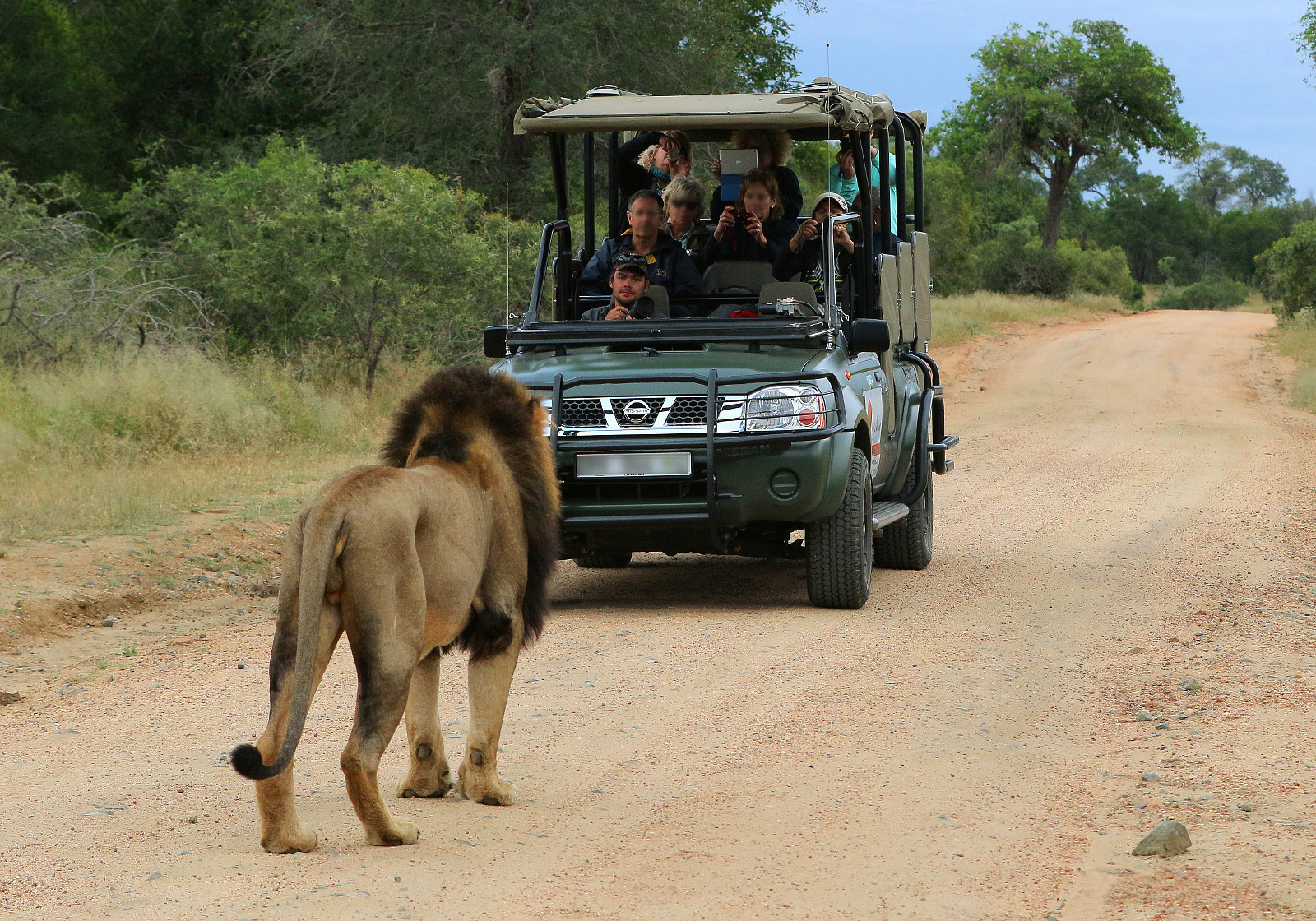 Budget Kruger Park Safari - 4 Day Group Tour