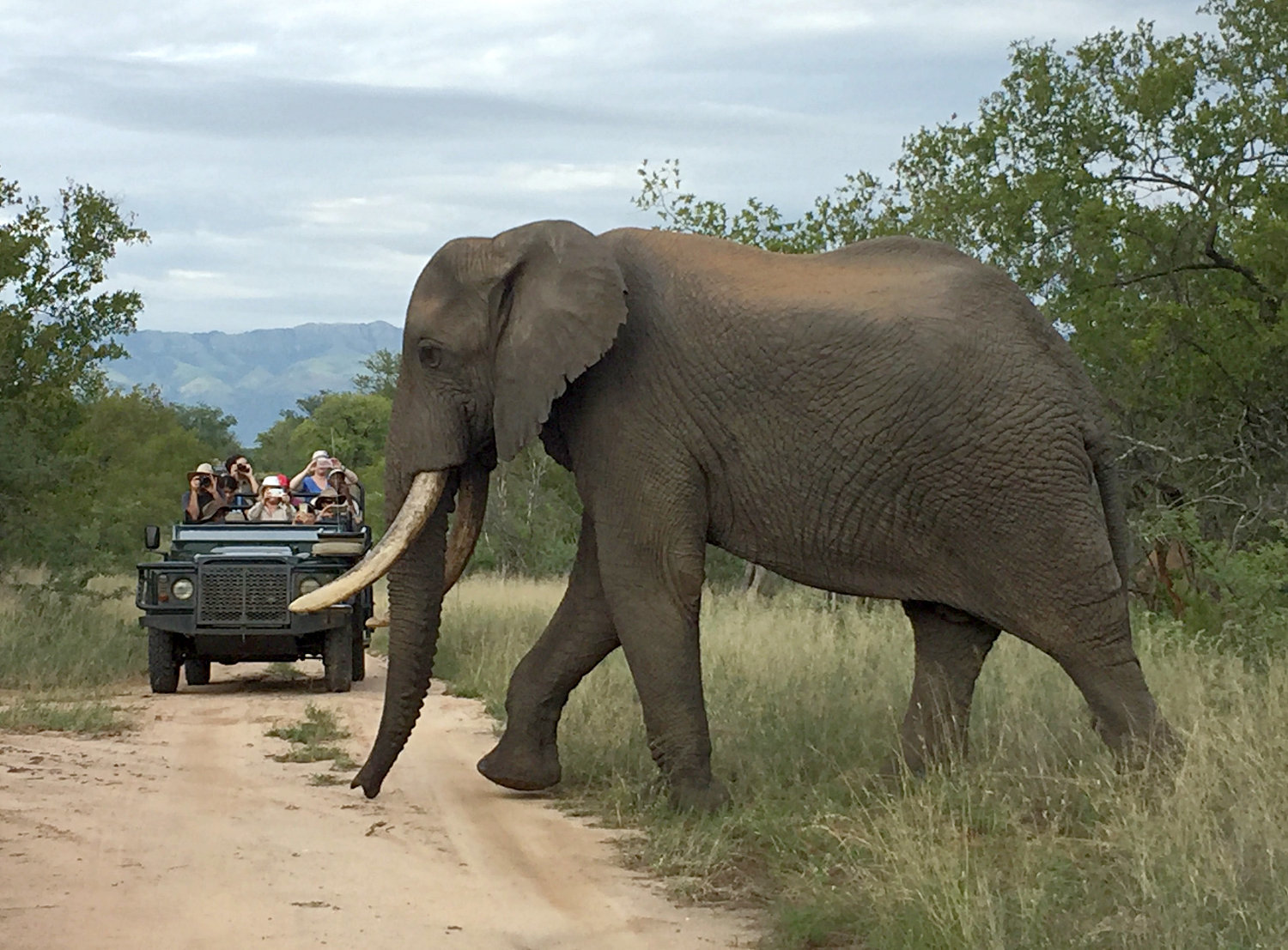 What is the difference between the Kruger National Park and